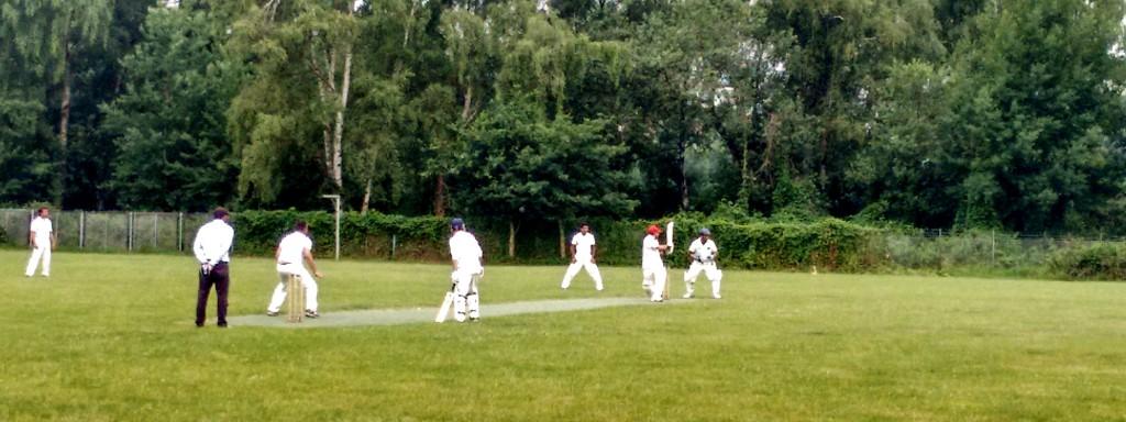 Cricket Bundesliga THCC Rot-Gelb Hamburg