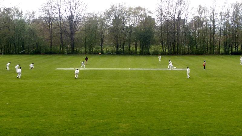 Cricket Göttingen Hamburg
